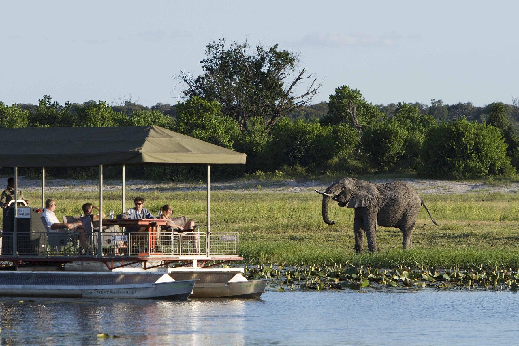 Safari In Va >> Chobe National Park