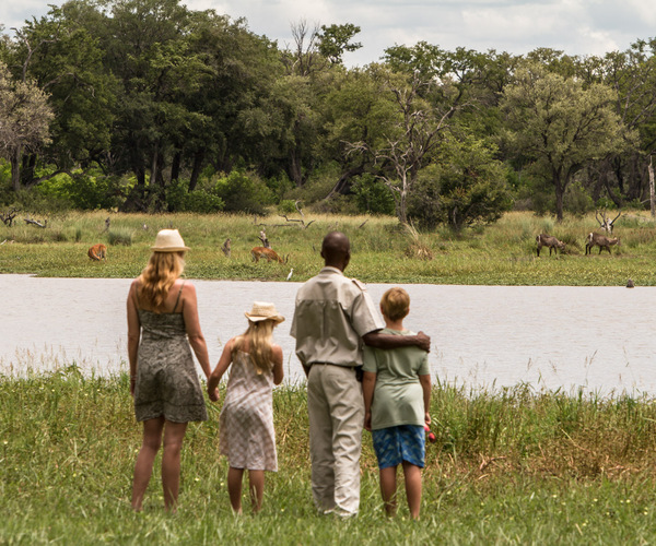 Ultimate Family Safari