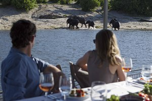 Chobe Game Lodge boat cruise